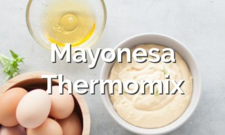 Mayonesa Thermomix