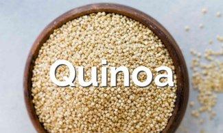 Quinoa, propiedades, sabor y cómo cocinarla